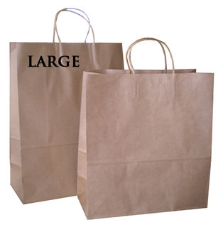 Brown Paper Bag large