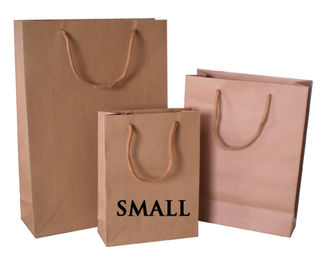 Paper Carry Bag small cord handle
