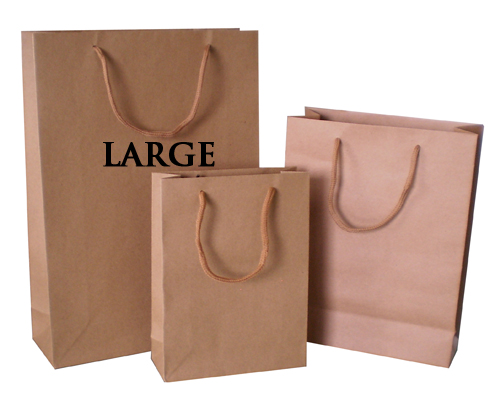 Paper Carry Bag large cord handle